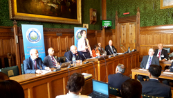 Overcoming Extremism Panel set in the House of Commons